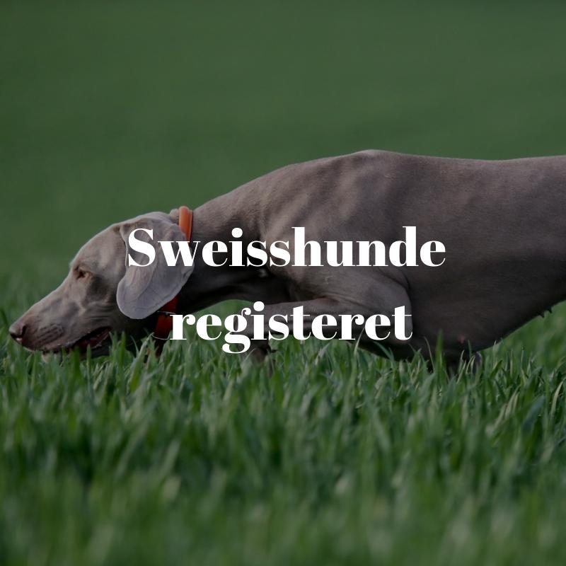 Sweisshunde registeret